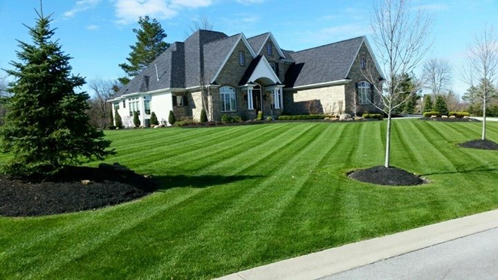 Keep Your Lawn Green This Summer with These 3 Tips